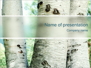 Birch Trees PowerPoint Template