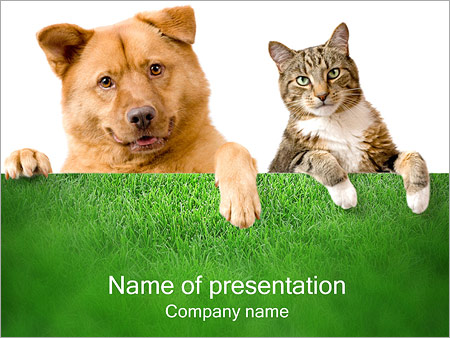 Dog Cat Powerpoint Template Infographics Slides