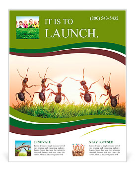 Team of ants on sunrise, joy of life, concept of success Flyer Template