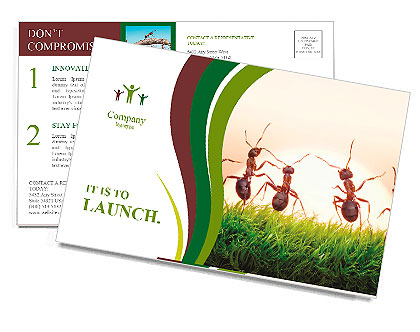 Team of ants on sunrise, joy of life, concept of success Postcard Template