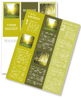 Summer sun warms in the park Newsletter Template