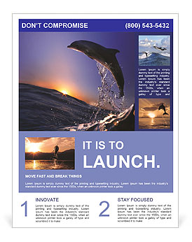 Gorgeous dolphin jump at sunset Flyer Template