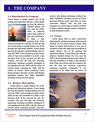0000101820 Word Template - Page 3