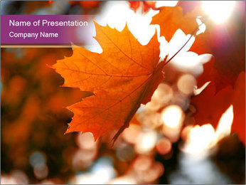 0000101946 PowerPoint Template