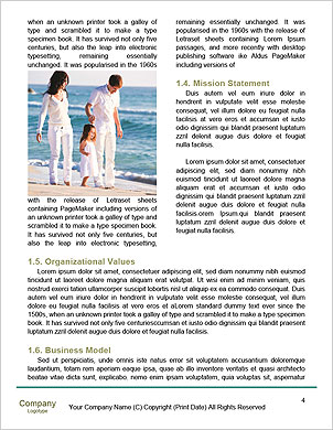 0000101958 Word Template - Page 4