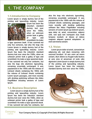0000101975 Word Template - Page 3
