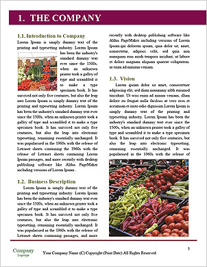 0000101993 Word Template - Page 3