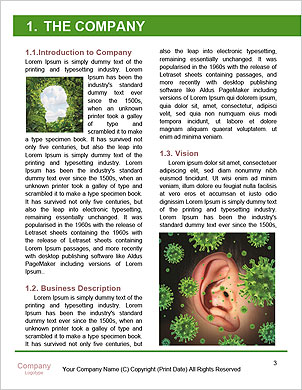 0000102002 Word Template - Page 3