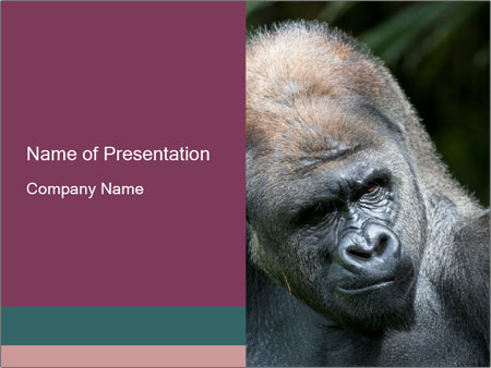 0000102013 PowerPoint Template