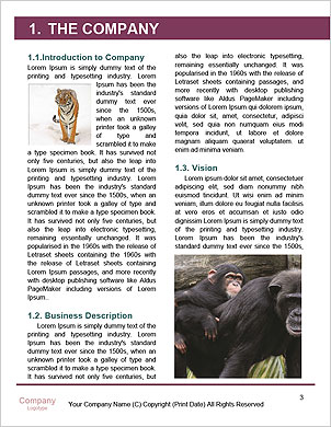 0000102013 Word Template - Page 3