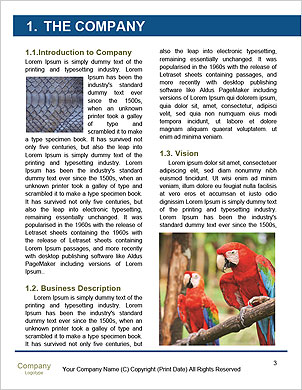 0000102062 Word Template - Page 3