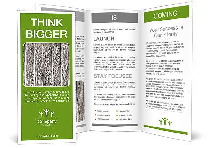 0000102116 Brochure Template