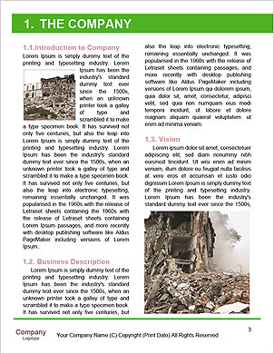 0000102162 Word Template - Page 3