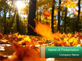 0000102163 PowerPoint Template