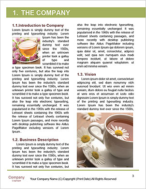 0000102171 Word Template - Page 3