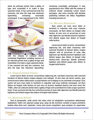 0000102175 Word Template - Page 4