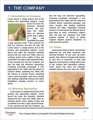 0000102214 Word Template - Page 3