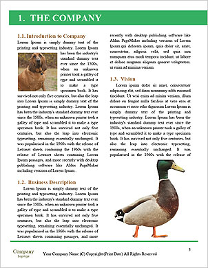 0000102224 Word Template - Page 3
