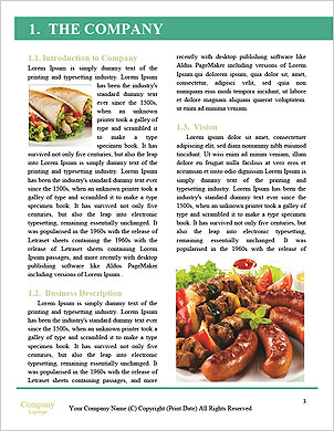 0000102231 Word Template - Page 3