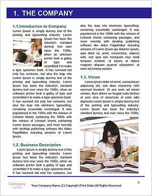 0000102251 Word Template - Page 3