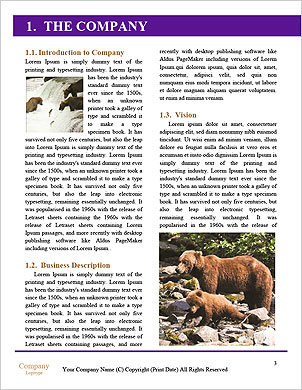0000102270 Word Template - Page 3