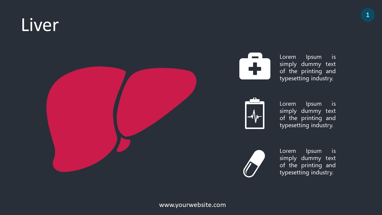 Liver PowerPoint Infographics