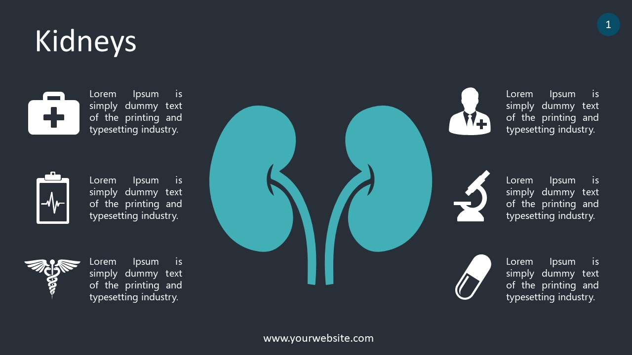 Kidneys PowerPoint Infographics