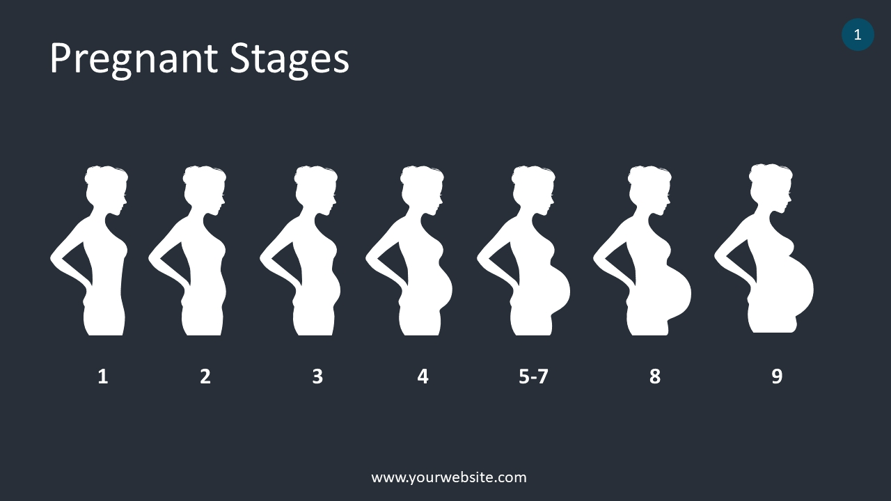Pregnant Stages PowerPoint Infographics
