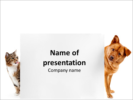 Cat And Dog Behind Placard Powerpoint Template Infographics Slides