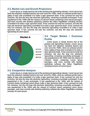 0000011626 Word Template - Page 7