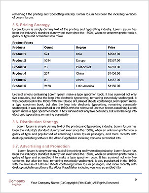 0000013403 Word Template - Page 9