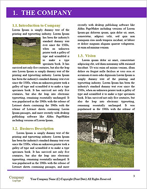 0000014117 Word Template - Page 3