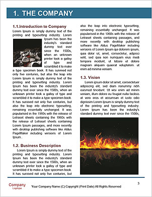 0000014485 Word Template - Page 3