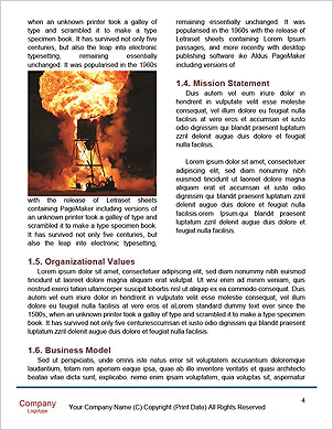 0000014485 Word Template - Page 4