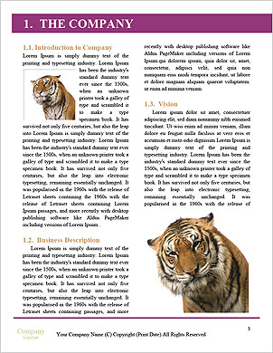 0000016049 Word Template - Page 3