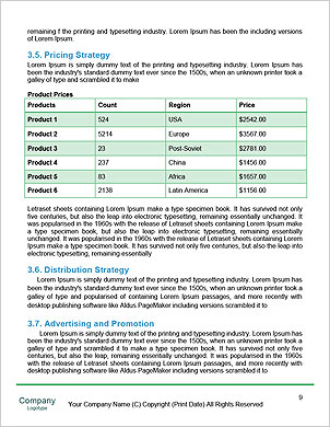 0000016678 Word Template - Page 9