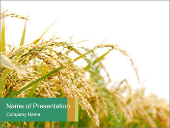 Agriculture PowerPoint Templates & Backgrounds, Google Slides Themes