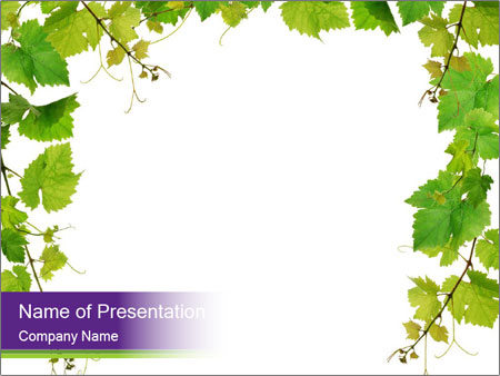Grape Leaves Frame Powerpoint Template Backgrounds Google Slides Id 0000017368 Smiletemplates Com