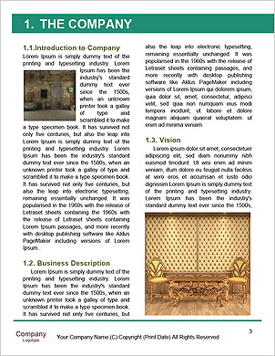 0000018053 Word Template - Page 3