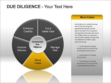 Due Diligence PPT Diagrams & Chart - Slide 10