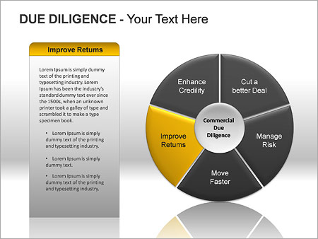 Due Diligence PPT Diagrams & Chart - Slide 11