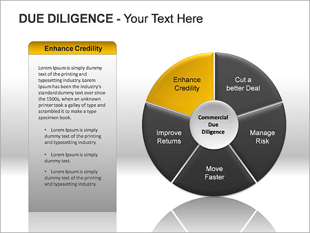 Due Diligence PPT Diagrams & Chart - Slide 12