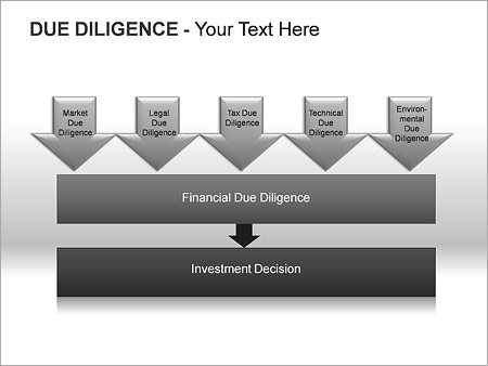 Due Diligence PPT Diagrams & Chart - Slide 13