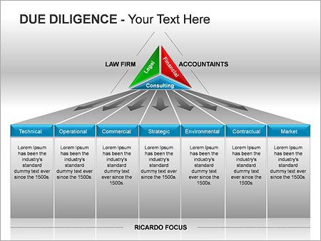 Due Diligence PPT Diagrams & Chart - Slide 2