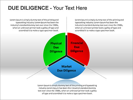 Due Diligence PPT Diagrams & Chart - Slide 4