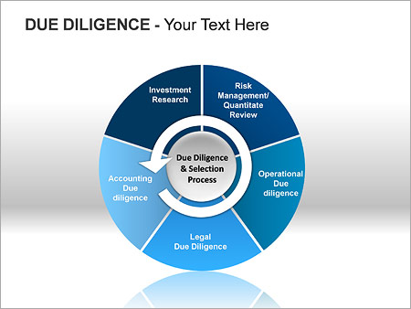 Due Diligence PPT Diagrams & Chart - Slide 5