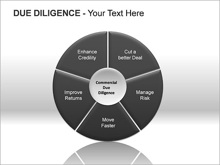 Due Diligence PPT Diagrams & Chart - Slide 7