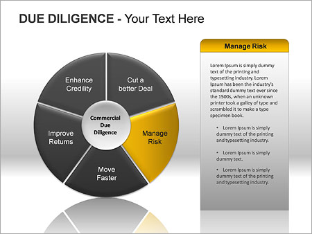 Due Diligence PPT Diagrams & Chart - Slide 9