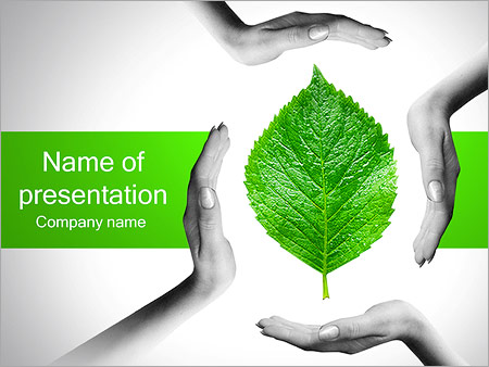 Hands With Green Leaf PowerPoint Template