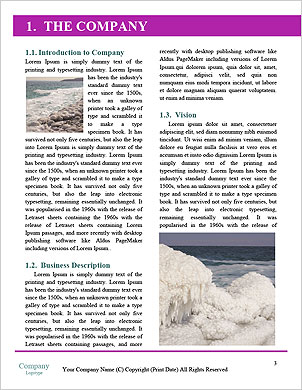 0000021643 Word Template - Page 3